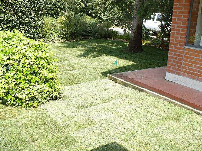 Realizzazione giardini pisa realizzazione giardini toscana
